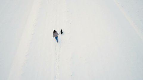 Drone top view of woman and small dog running in snow 4K. Aerial done shot from above a single person and dog in focus walk on snow terrain in winter.