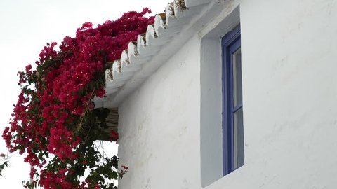 Blue andalusian window of a house