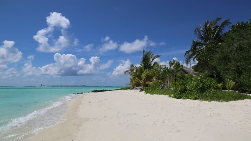 Tropical beach in the Maldives at summer day | Shutterstock HD Video #1014316103