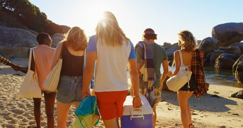 Group of ffriends walking with ice box in the beach on a sunny day 4k