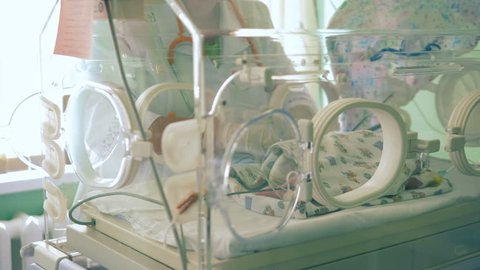 One nurse checks a baby in an incubator, close up.