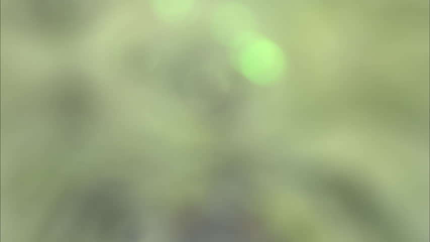Defocus surreality abstract kaleidoscope background footage for creative design