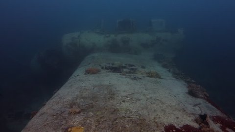 Move down wing of wreck of seaplane, through cockpit and down other wing to reef in Palau.