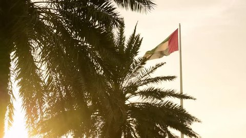 Super slow motion of the United Arab Emirates flag with palm trees golden glow. Sunset light.
