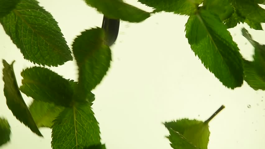 Close up several fresh green mint leaves floating in tea with air bubbles, low angle side view, slow motion | Shutterstock HD Video #1015891723