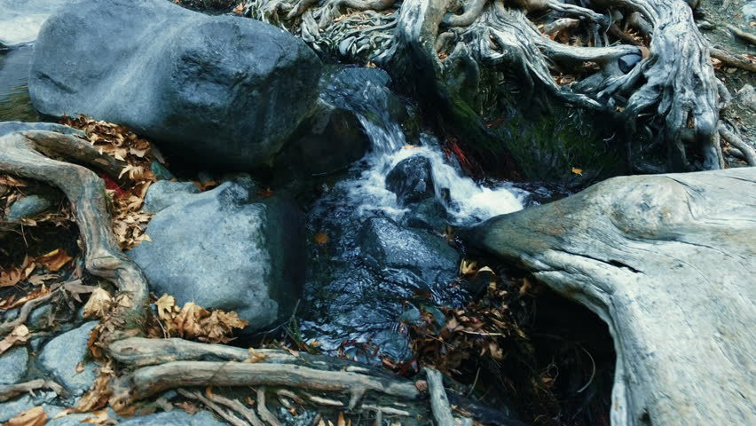 Mountain creek with clear water in autumn nature reserve. Fresh spring water flowing in summer park. Close up mountain river stream in wood. Forest stream running on rocks. Wild water flow
