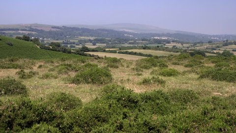 Camera descends from view of Eastern Dartmoor behind Bracken bushes during the the hot summer of 2018