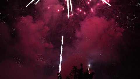 Fireworks Background. Beautiful Color Light At Dark Night. Slow Motion And Close Up.