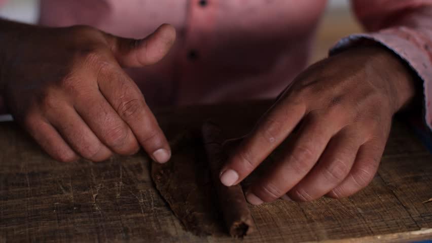 A Farmer Rolls Cigars Inside A Traditional Tobacco Barn. Vinales Valley, Cuba #1016120053