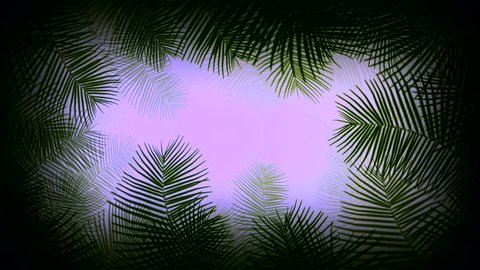 Coconut palm leaves transparent frame moving by the wind looping and copy space animation 4K on black background with alpha channel