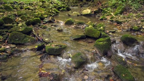 Weilerbach, South Eifel, German-Luxembourg Nature Park, Rheinland-Palitinate, Germany - September 20, 2018: A small stream flows over a rocky forest gully with audio