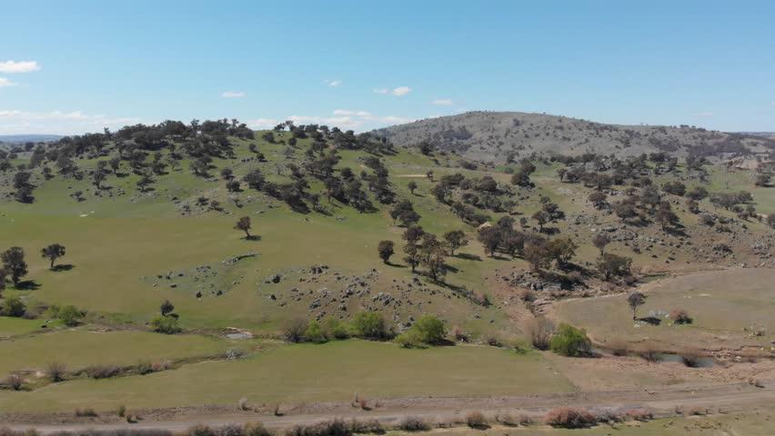 Agriculture Australia livestock grazing rural farmland - Aerial drone shot | Shutterstock HD Video #1016770513
