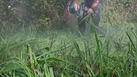 The gardener mows the tall grass with an electric lawn mower
