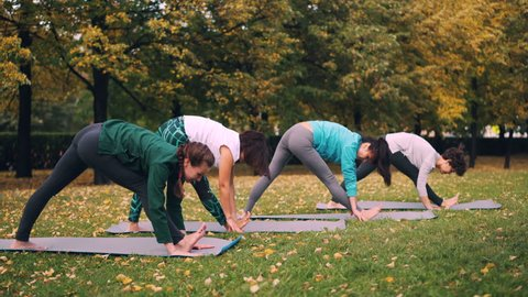 Yoga class is doing stretching exercises in park enjoying autumn nature, fresh air and physical activity. Well-being, recreation and young people concept.