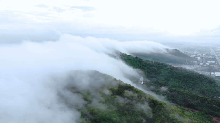 Aerial view of fog covered trees in the Valley beautiful autumn travel concept. #1017477253