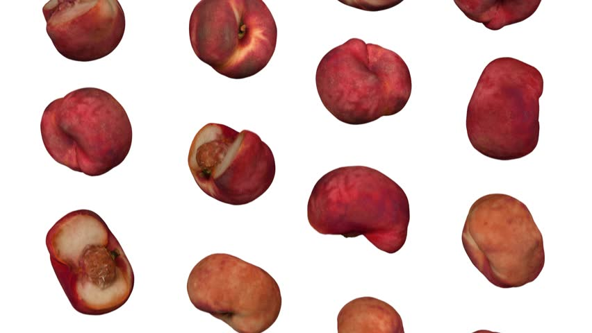 Realistic render of falling saturn peaches on white background. The video is seamlessly looping, and the objects are 3D scanned from real peaches.  | Shutterstock HD Video #1017949213