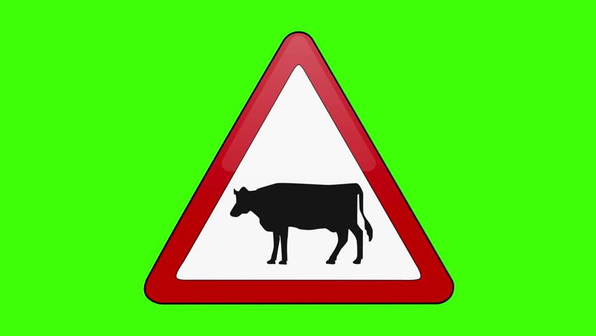 Symbol Cattle Crossing Green Screen   Shutterstock HD Video #1018173673