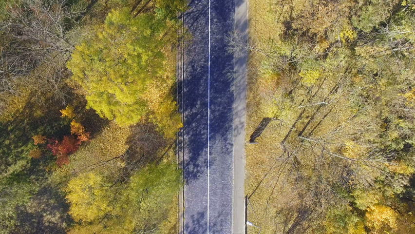 Overhead aerial top view over car travelling through colorful forest | Shutterstock HD Video #1018304833