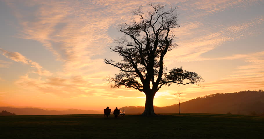 6f3025a8de71 Sunset on the top in Velká Lhota old lone tree underneath which sits a  loving couple watching the sunset down the hill