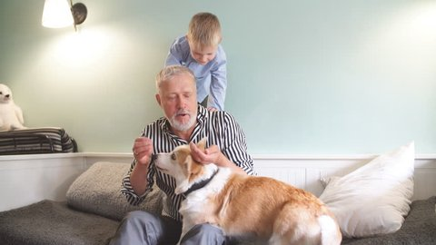 Grandfather and grandson with dog sitting at couch in living room