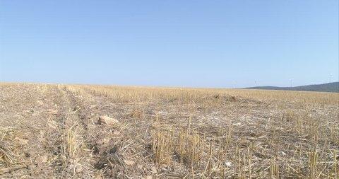 Aerial across dead farm crops field 4K in Germany, Europe