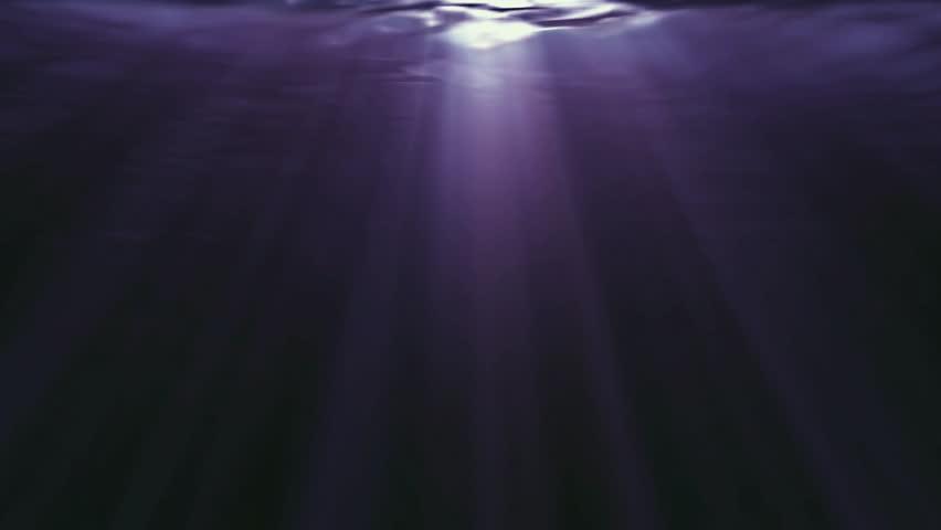 Under water view | Shutterstock HD Video #1019766703