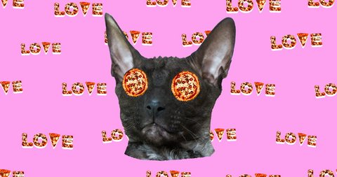 Minimal animation fast food art. Funny Cat pizza lover