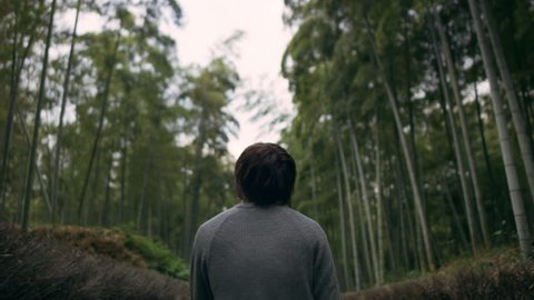 Young man walking and looking up at the tall bamboo trees in a forest in Kyoto, Japan with soft natural lighting.