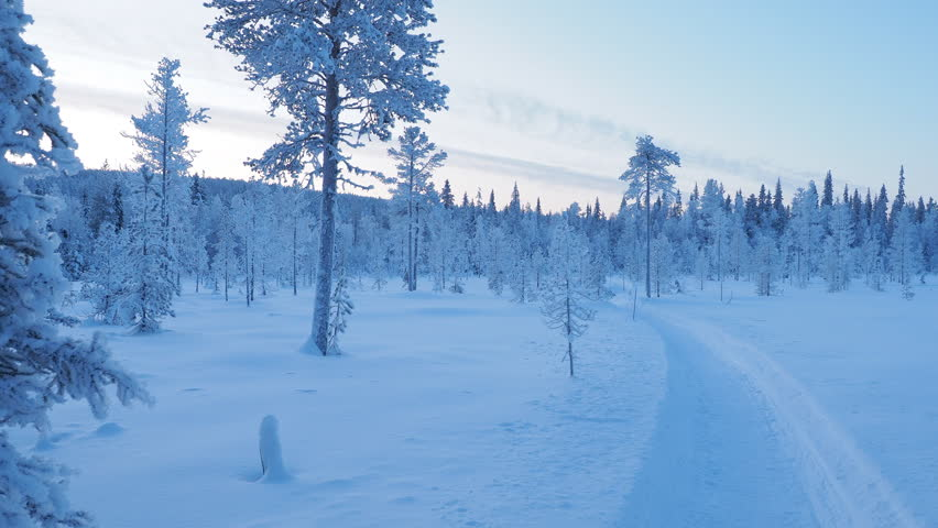 Majestic winter wonderland morning at Christmas in Lapland Finland | Shutterstock HD Video #1021120603