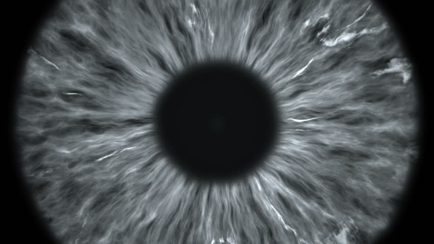 The gray eye is an extreme close-up of the iris and pupil, widening and tapering. #1021392043
