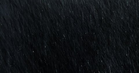 4k Heavy angled rain falling in front of the camera against black screen. Raindrops splashing. Rain closeup vfx insert. Practical seamlessly loopable footage. Heavy rainstorm hitting black surface.