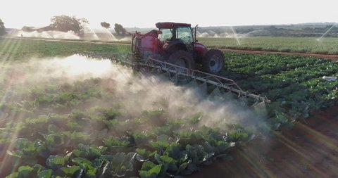 AFRICA,SOUTH AFRICA,CIRCA 2018,Spectacular 4K blacklit close-up aerial fly over view directly behind a tractor spraying large scale farming vegetable crops with pesticide