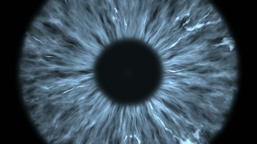 The gray eye is an extreme close-up of the iris and pupil, widening and tapering. #1021684813