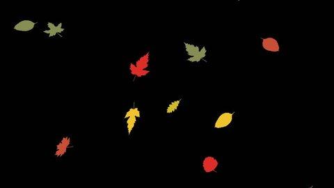 beautiful autumn leaves falling animation flat style with black background