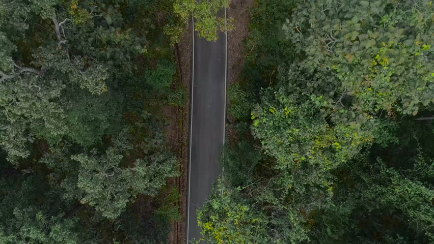 Aerial view of forest road and cars drive through of a country road running  #1022186323