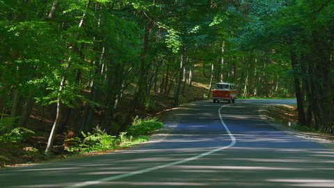 Driving a VW van on a road through a forest.