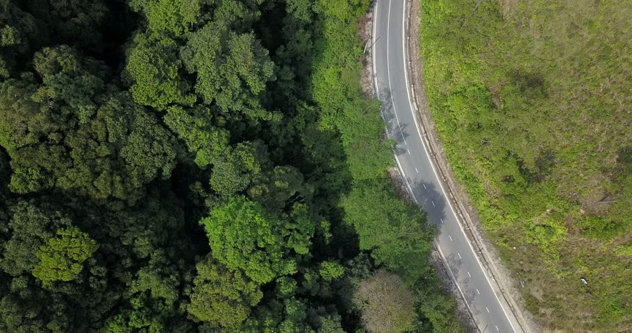 aerial view of little traffic road among green forrest #1022869753