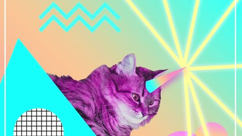 Contemporary motion gif art. Ice creams fly near pink cat with unicorn horn and shooting lazers from it