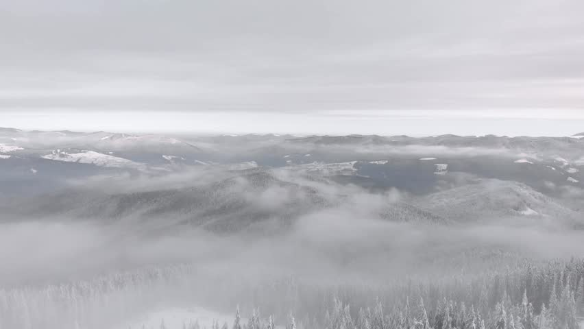 Drone aerial flying above mountain winter snow covered frozen pine forest. Fog valley landscape on background | Shutterstock HD Video #1023080923