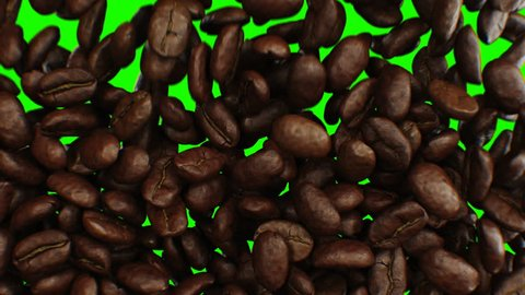 Beautiful Abstract Roasted Coffee Beans Fall Down and Fill the Screen Making Transition Close-up in Slow Motion on Green Screen. 3d Animation with Alpha Matte. 4k Ultra HD 3840x2160.