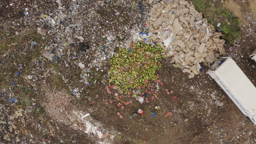4K spectacular aerial view of thousands of watermelons being discarded onto a landfill dump site while the world battles food shortages and people rummage for food | Shutterstock HD Video #1023309253