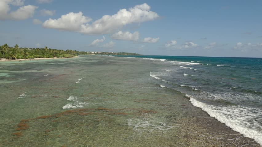 Guadeloupe / France - January 1, 2019 : Aerial of the scenery and natural landscape in Guadeloupe, a French overseas region in the Carribean.  | Shutterstock HD Video #1023783163