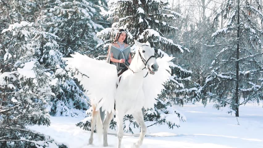 First horse riding, sweet cute girl with long black straight hair puts on white horse with wings, pegasus strides forward uncertainly in brilliant snow in winter forest, bright bright fairytale video   Shutterstock HD Video #1023960233