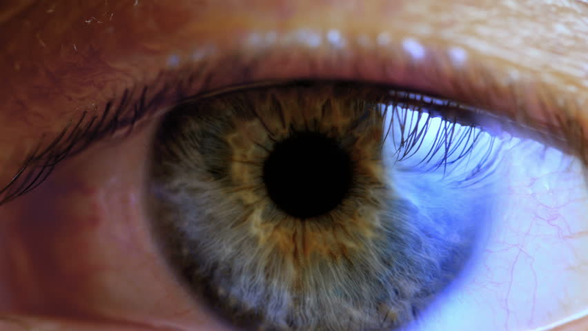 Extreme close up human eye iris  | Shutterstock HD Video #1024275113