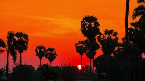 4K timelapse video of sunrise in Sattahip city, Chonburi Thailand.