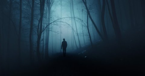 Man walking alone in dark blue foggy forest.