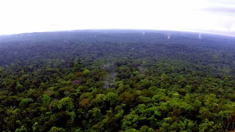 Shooting from the air over the tropics. Shooting from the air over the tropics. Equatorial Guinea. / Rain-forest Africa. The view from the helicopter. Flying over the jungle