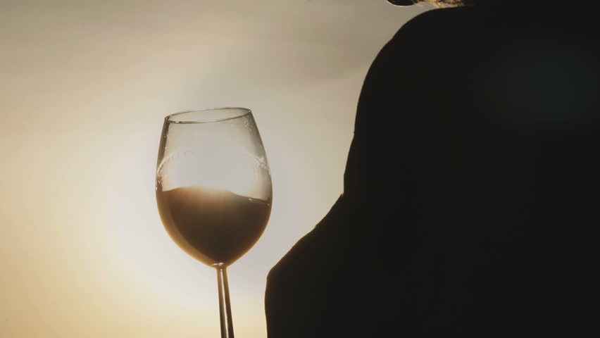 Woman drinking red wine from a glass and watching on sunset | Shutterstock HD Video #1025309123
