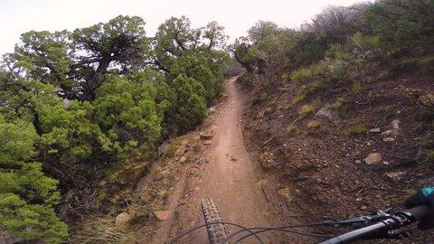 POV Mountain Biking On A Beautiful Foggy Trail