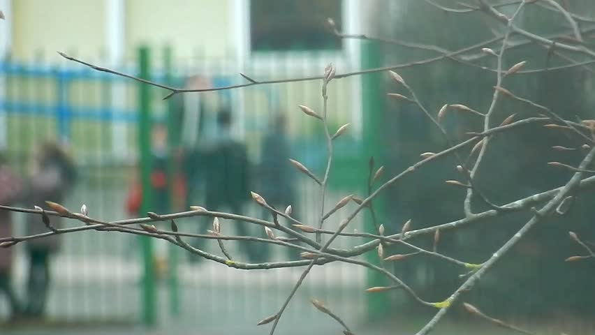 Branches & snowfall in foreground & bokeh blurred children in school playground in background. | Shutterstock HD Video #1025893223